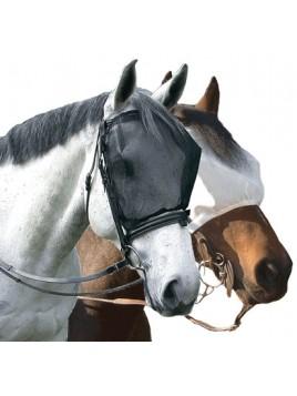 Mosquero Cavallo